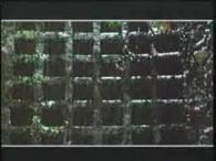 Falco – Jeanny Part I lyrics Jeanny, komm, come on Steh auf – bitte, du wirst ganz nass Schon spät, komm – wir müssen weg hier, Raus aus dem Wald, […]