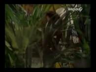 Philippe Lavil – Il Tape Sur Des Bambous lyrics Il vit sa vie au bord de l'eau Cocos et coquillages Un dollar pour prendre en photo Son plus beau tatouage […]